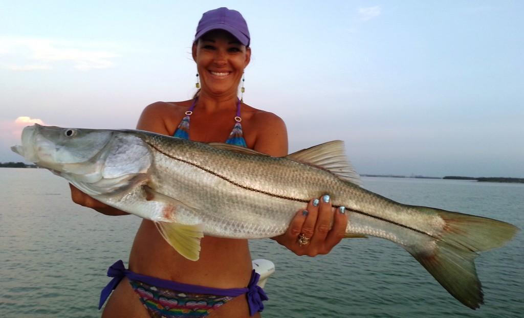 Tampa fishing charters florida fishing reports photos for Clearwater beach fishing