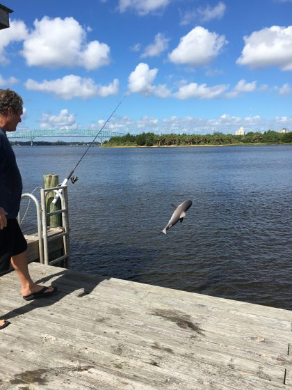 Catch & Release!